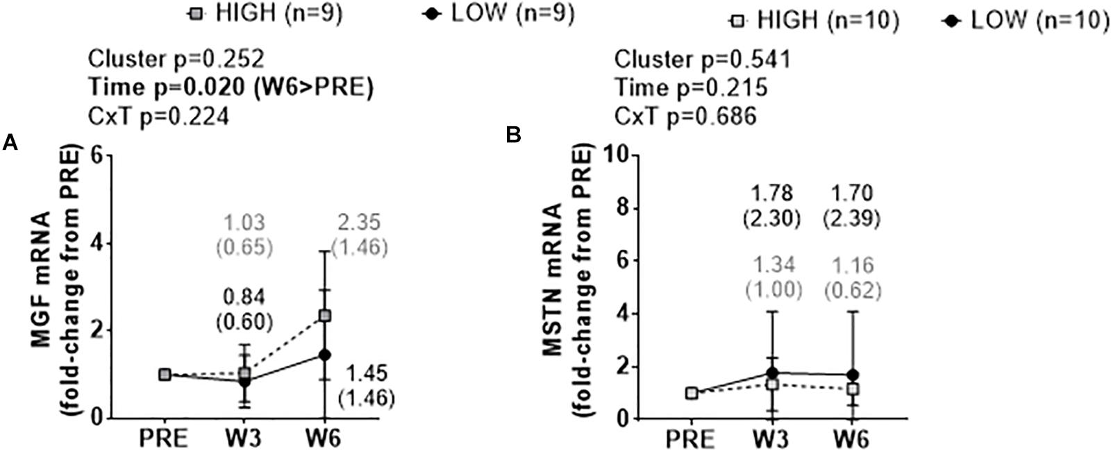 Frontiers | Pre-training Skeletal Muscle Fiber Size and
