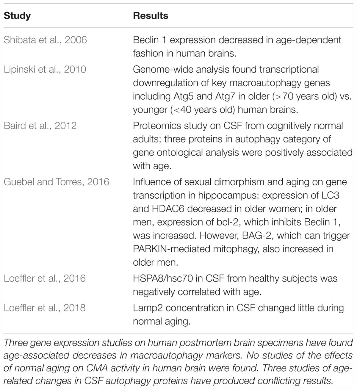 Frontiers | Influence of Normal Aging on Brain Autophagy: A