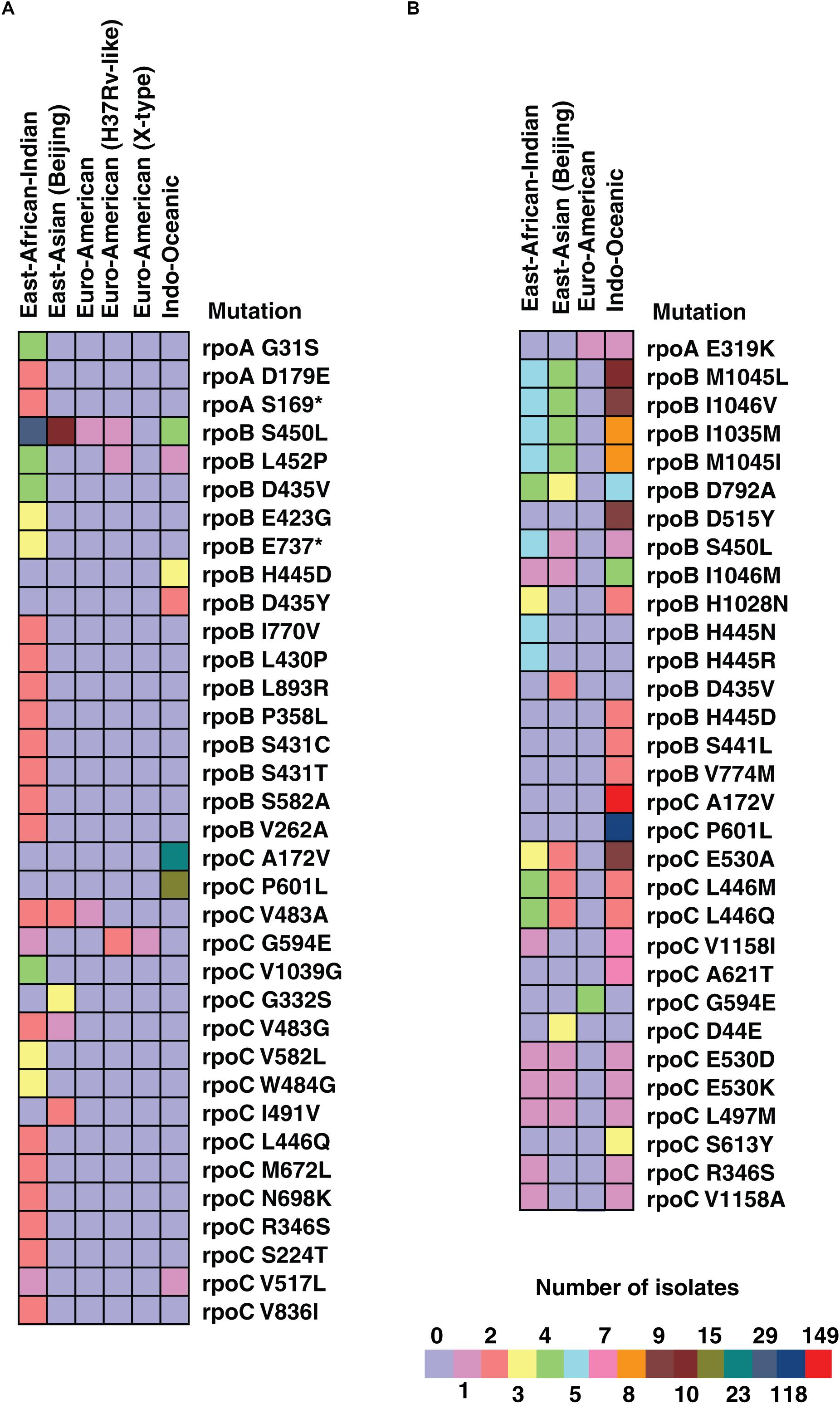 Frontiers | Whole Genome Sequencing of Mycobacterium