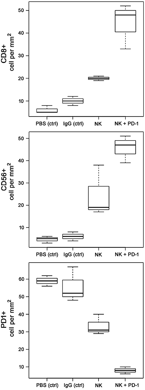 Frontiers | Ex vivo Hsp70-Activated NK Cells in Combination With PD