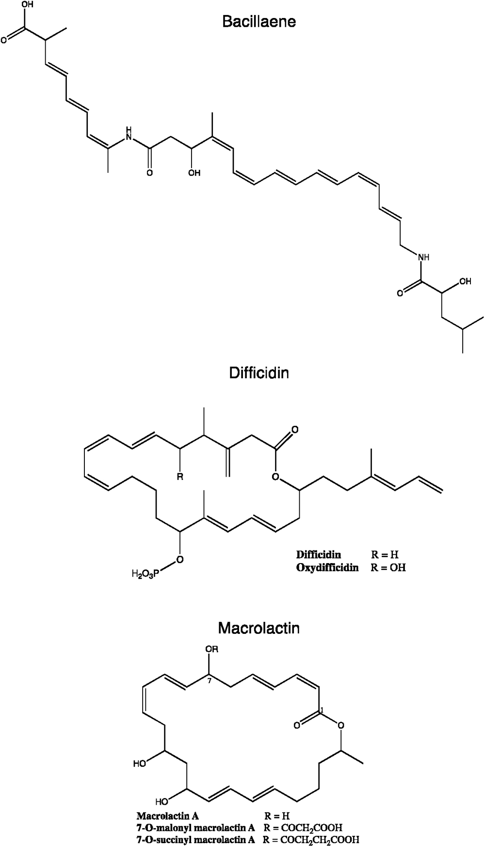 Frontiers   Overview of the Antimicrobial Compounds Produced by