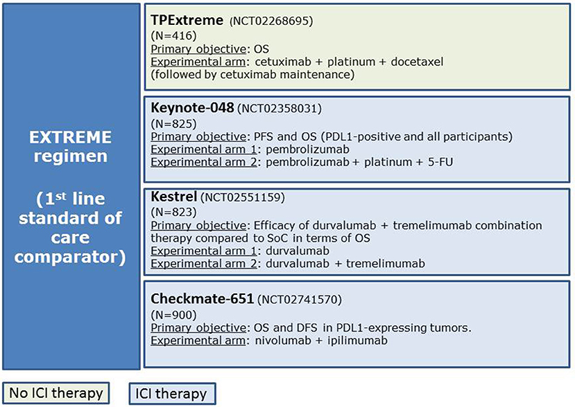 Frontiers | Cetuximab-Containing Combinations in Locally Advanced