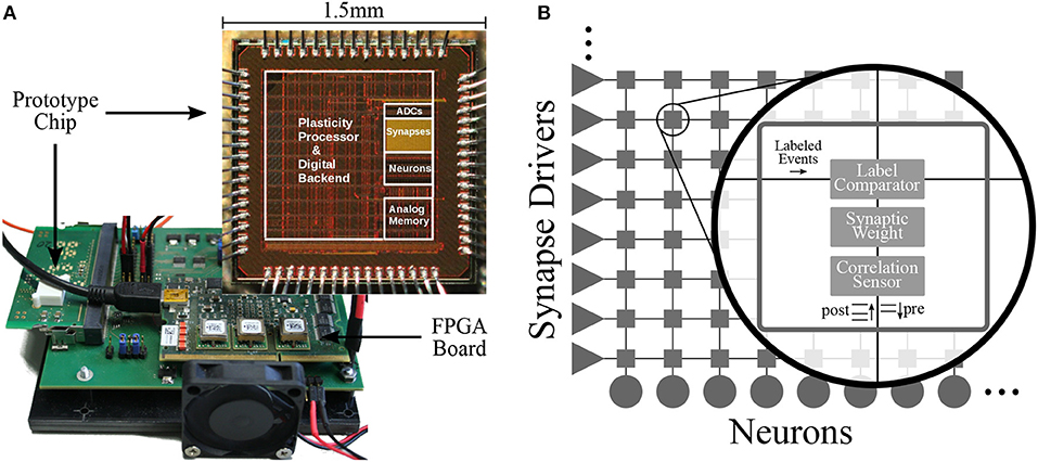 Frontiers | Demonstrating Advantages of Neuromorphic Computation: A