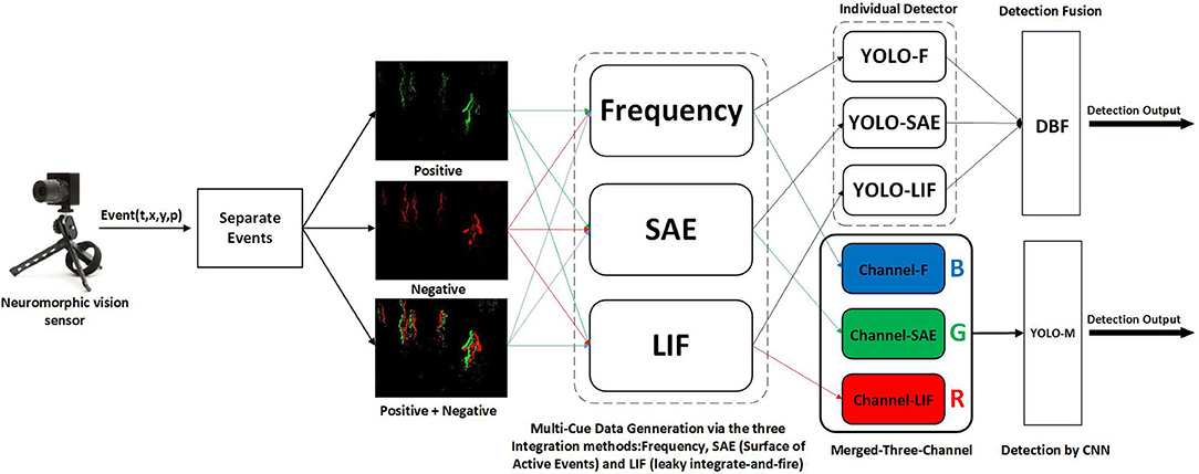 Frontiers | Multi-Cue Event Information Fusion for Pedestrian
