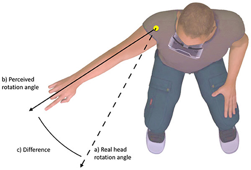 Figure 2 - Exaggeration of head movement using virtual reality.