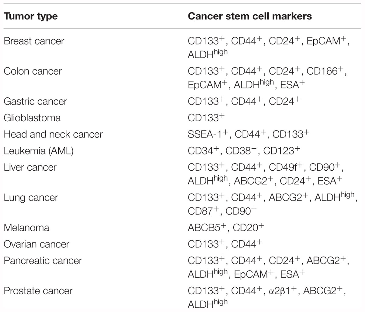 Frontiers | Meeting the Challenge of Targeting Cancer Stem