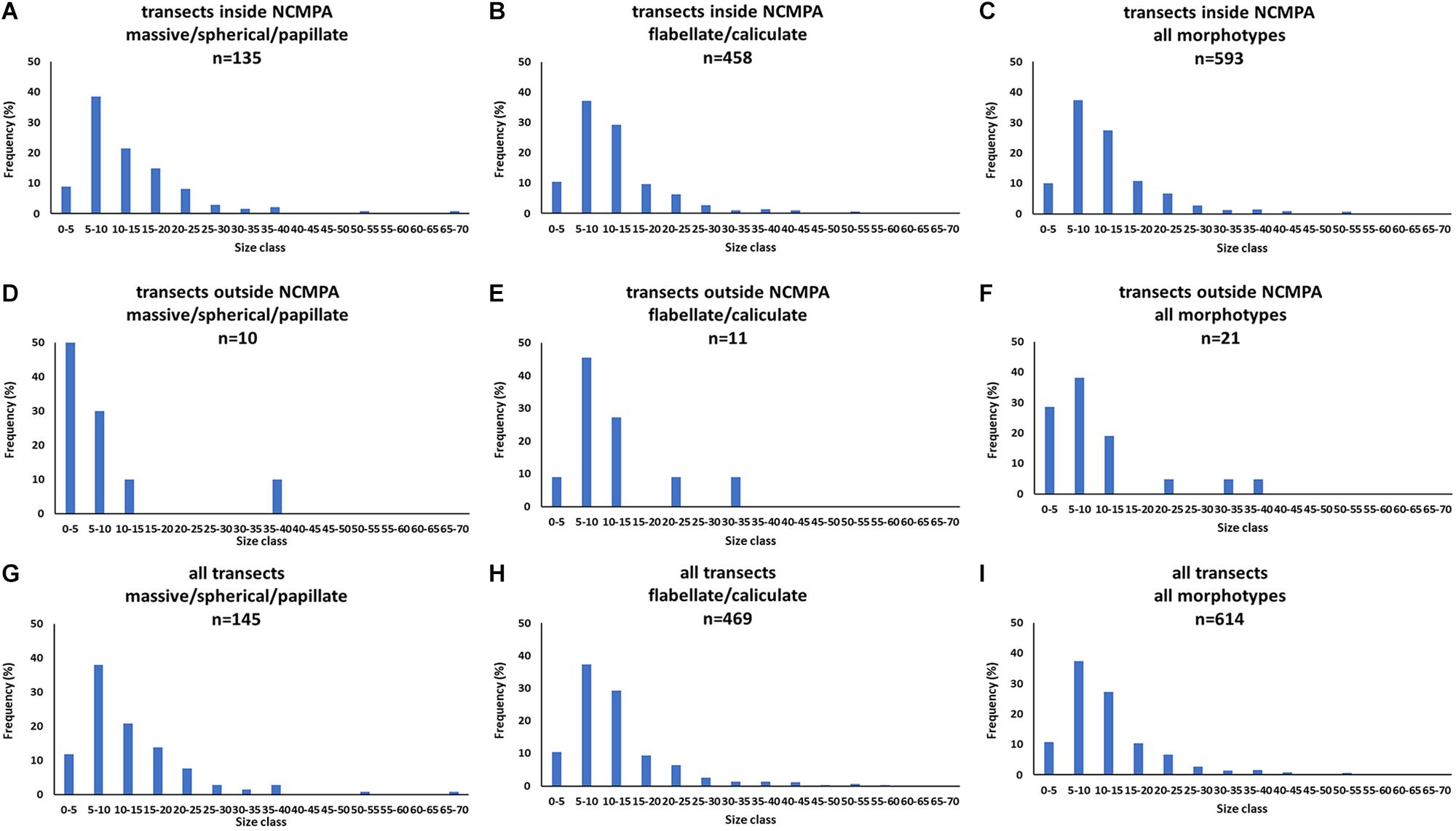 Frontiers | Distribution of Deep-Sea Sponge Aggregations in
