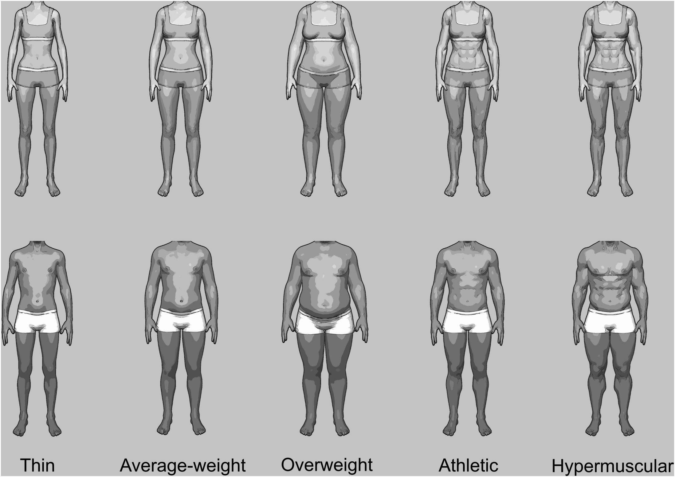 Frontiers | Gender Differences in Body Evaluation: Do Men