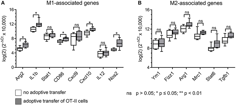 Frontiers | Cognate Interaction With CD4+ T Cells Instructs