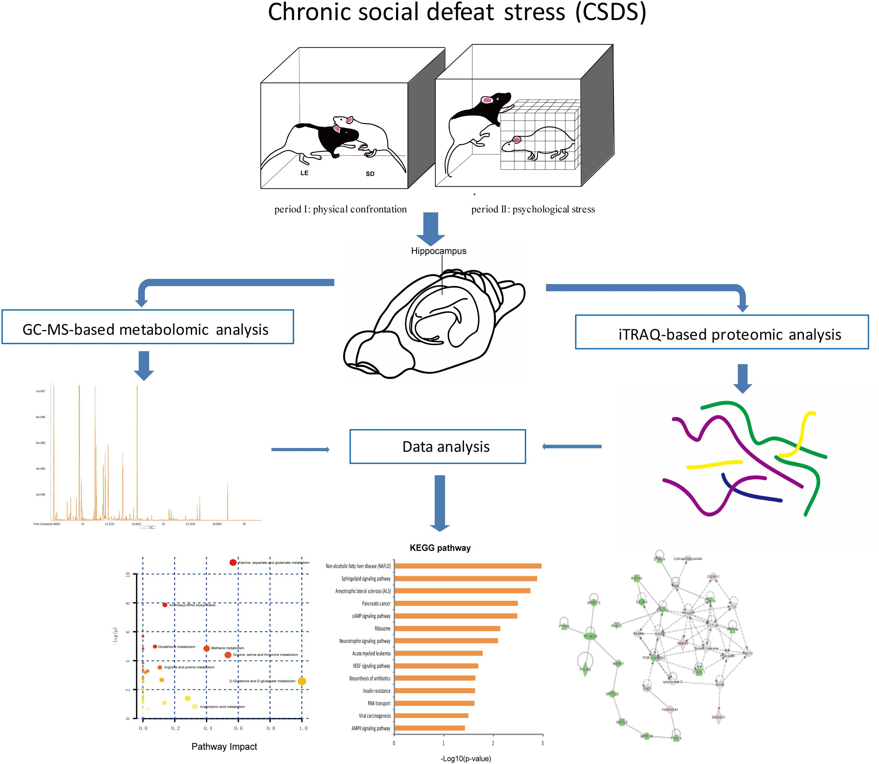 Frontiers   Integrated Metabolomics and Proteomics Analysis Revealed