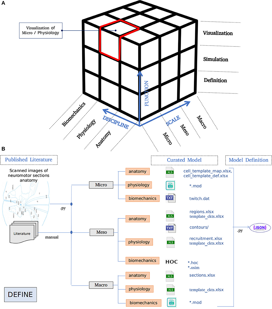 eh mcnamara terminal map Frontiers Curated Model Development Using Neuroid A Web Based eh mcnamara terminal map