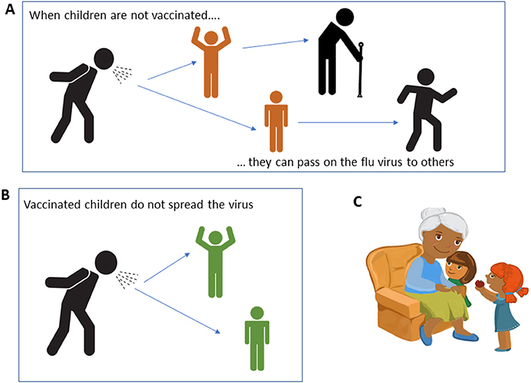Figure 2 - How children vaccinated with LAIV protect others from flu.