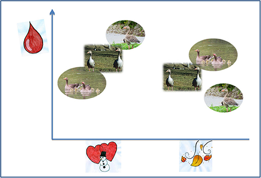Figure 1 - The hematocrits of graylag geese vary depending on the season.
