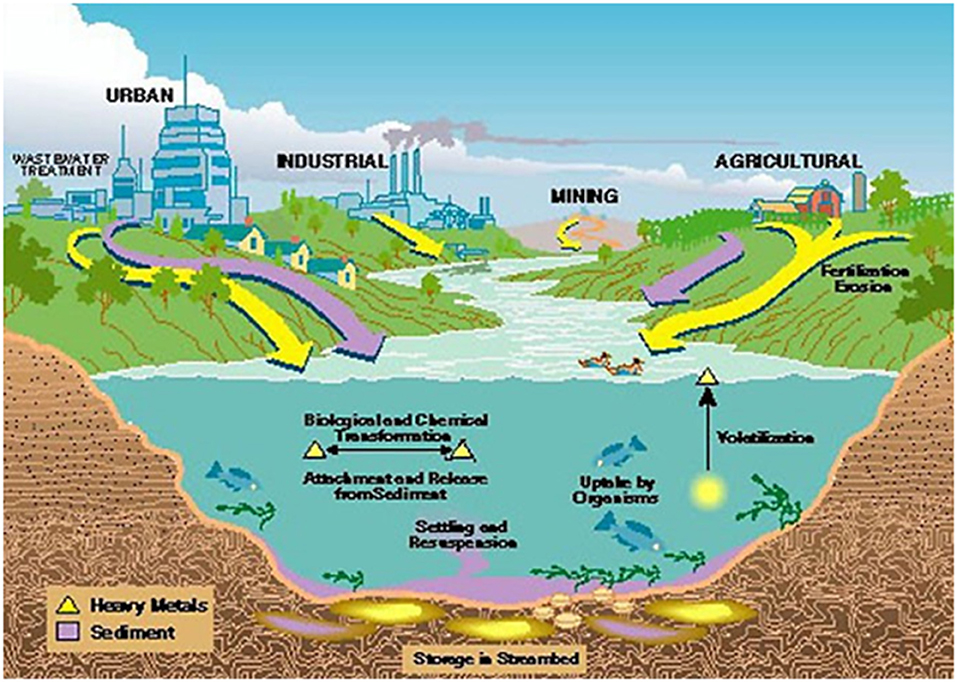 Image result for gold led arsenic water contamination