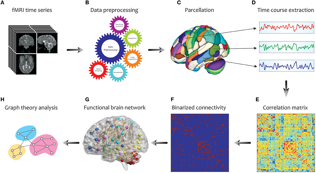 Frontiers | Application of Graph Theory for Identifying Connectivity