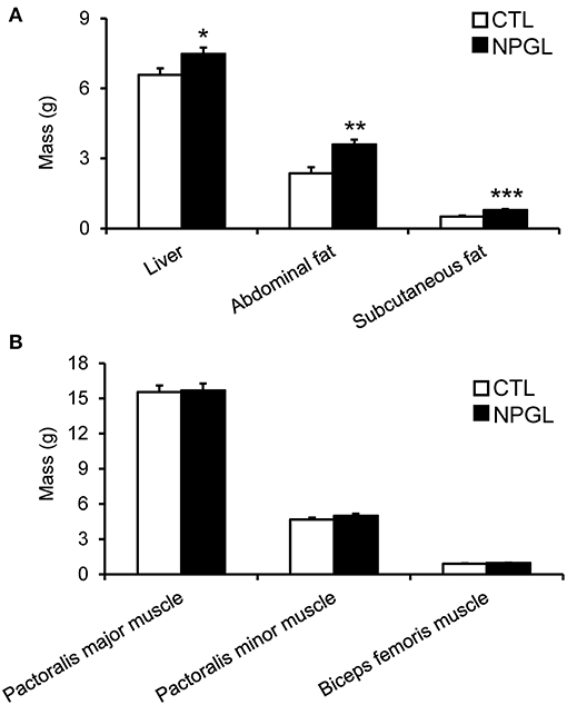 Frontiers | Neurosecretory Protein GL Induces Fat Accumulation in