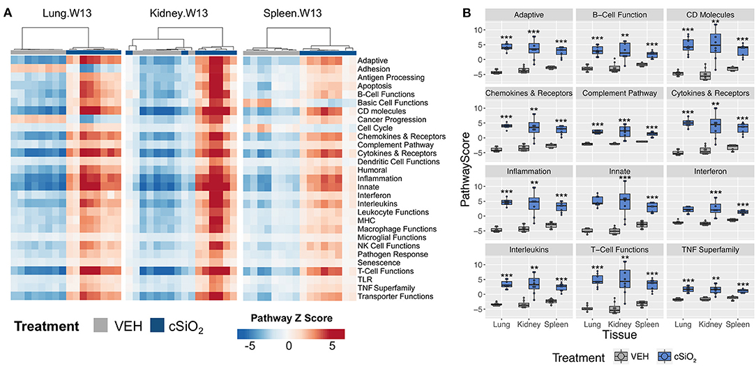 Frontiers | Mapping of Dynamic Transcriptome Changes