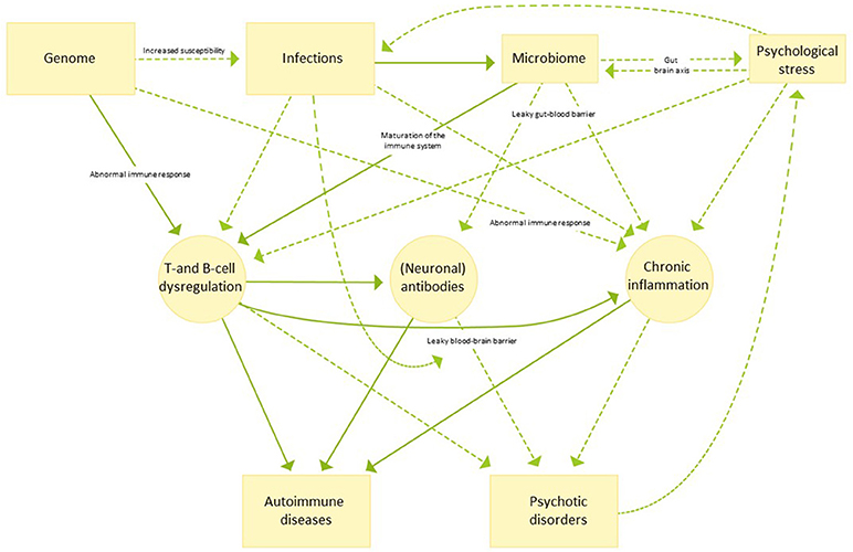 Frontiers   Autoimmune Diseases and Psychotic Disorders