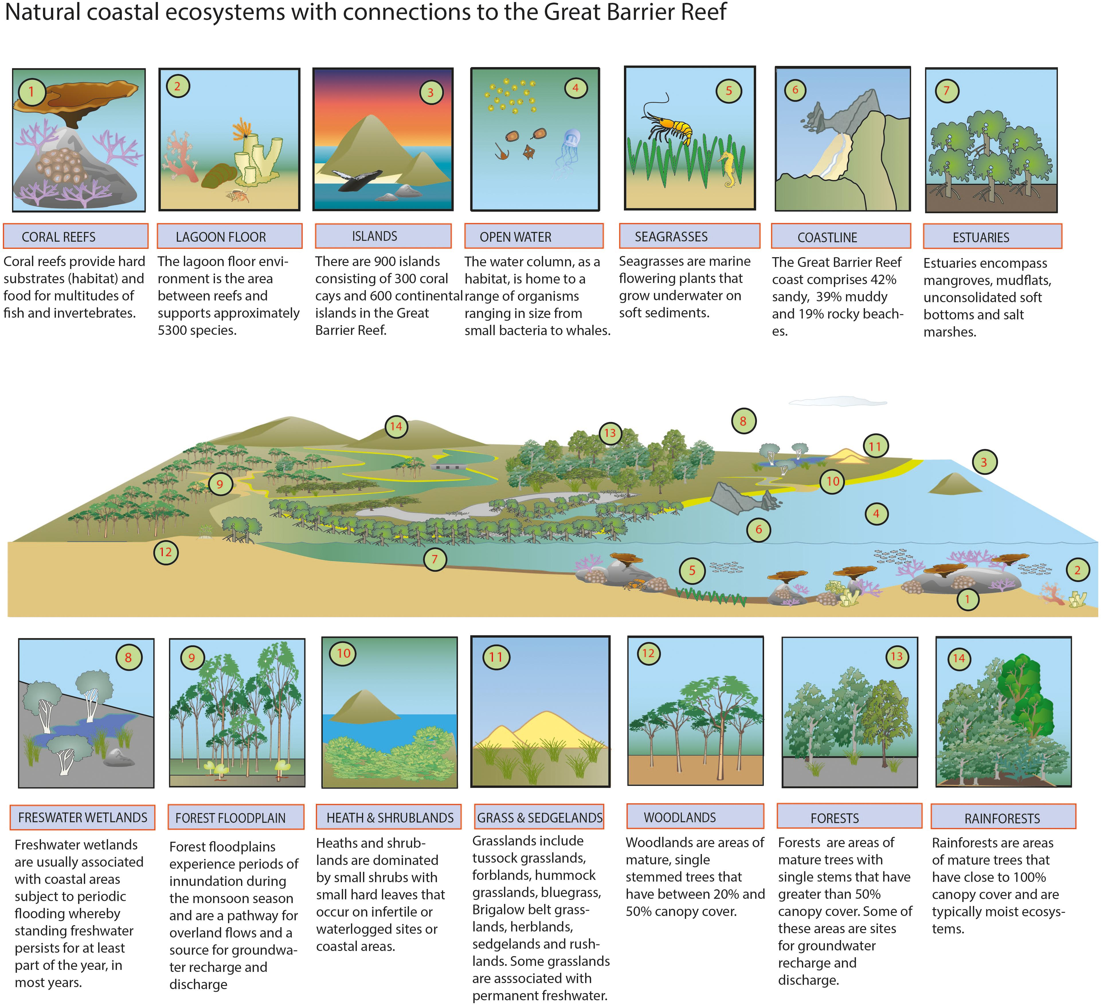 Frontiers | Lost Floodplain Wetland Environments and Efforts to