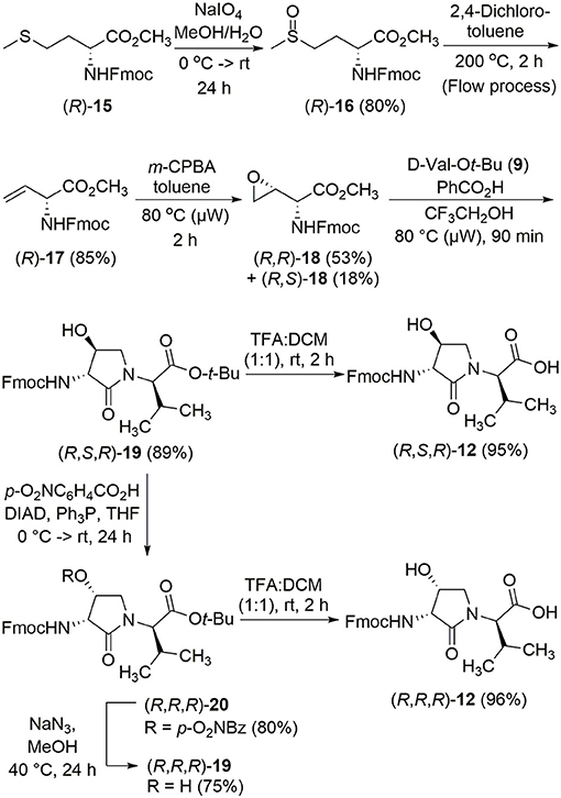 Frontiers | Probing Anti-inflammatory Properties Independent of NF