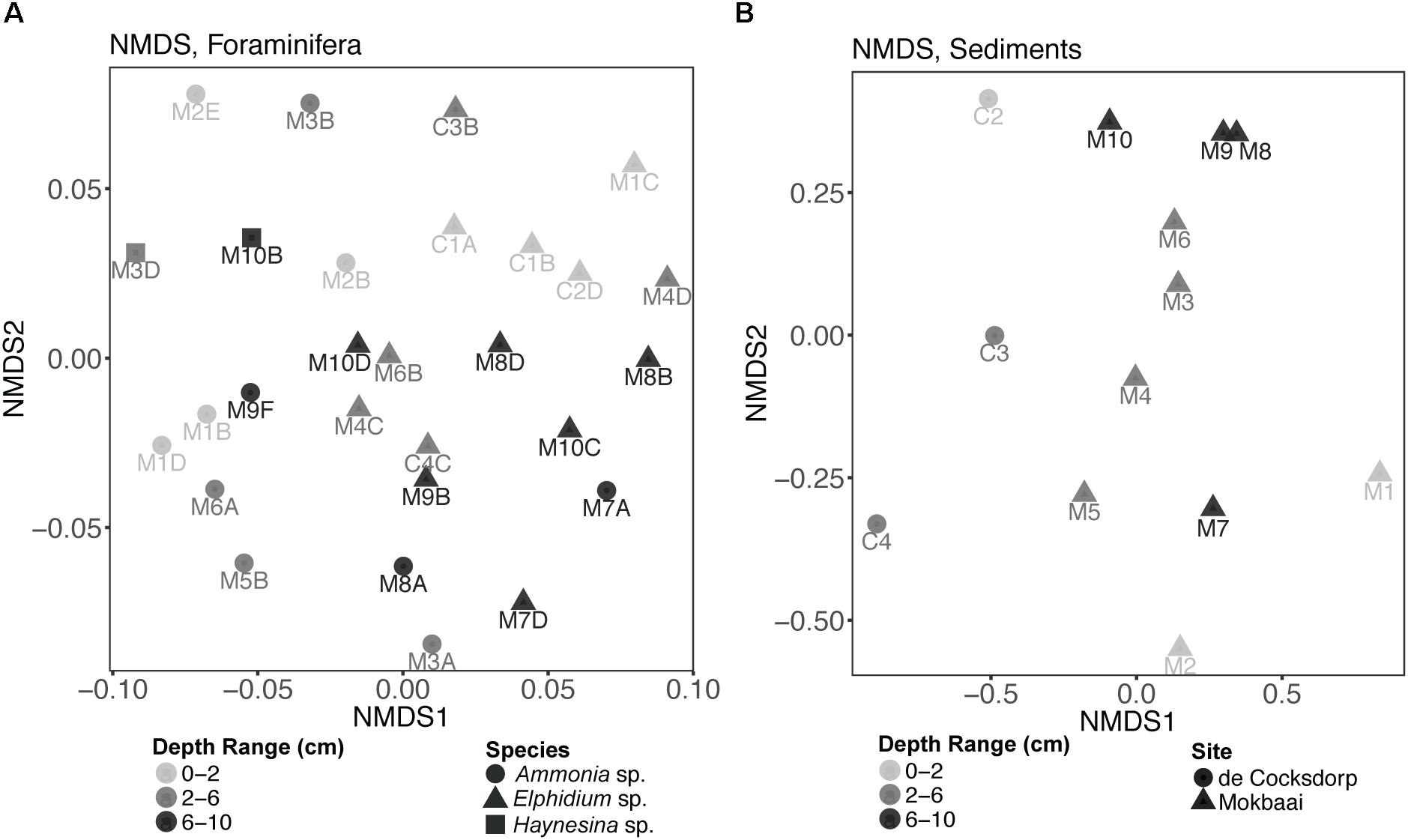 Frontiers | Metabarcoding Insights Into the Trophic Behavior