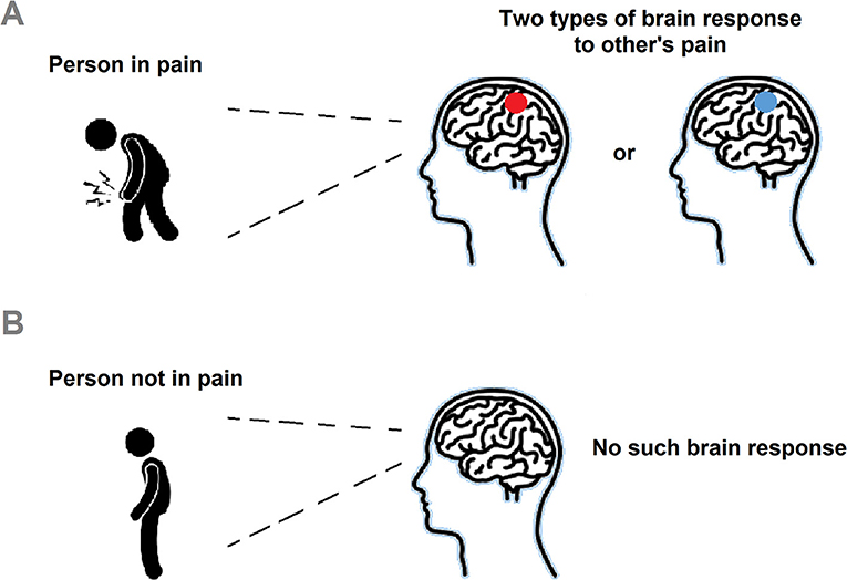 Figure 1 - S1 brain response to others' pain.