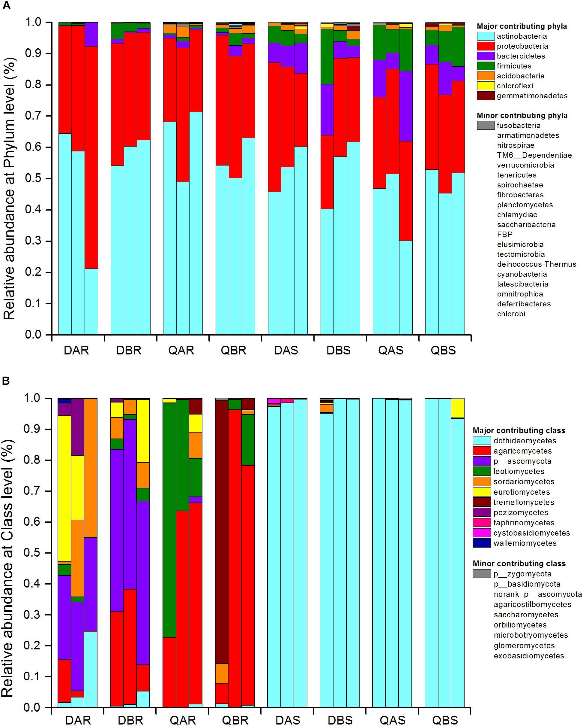 Frontiers | Endophytic Communities of Transgenic Poplar Were