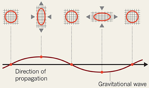 Figure 2 - Gravitational waves travel at the speed of light.