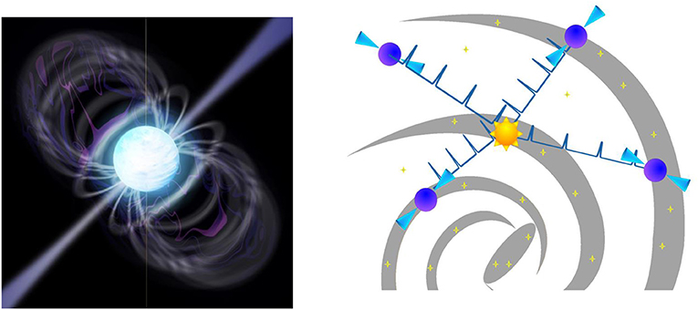 Figure 4 - Pulsars (left) are very special types of neutron stars that spin around as fast as hundreds of times each second.
