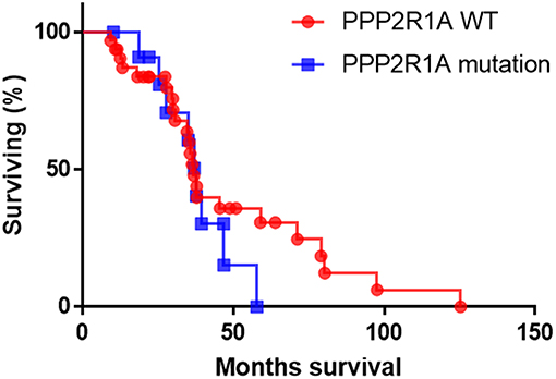 Frontiers | PP2A: A Promising Biomarker and Therapeutic