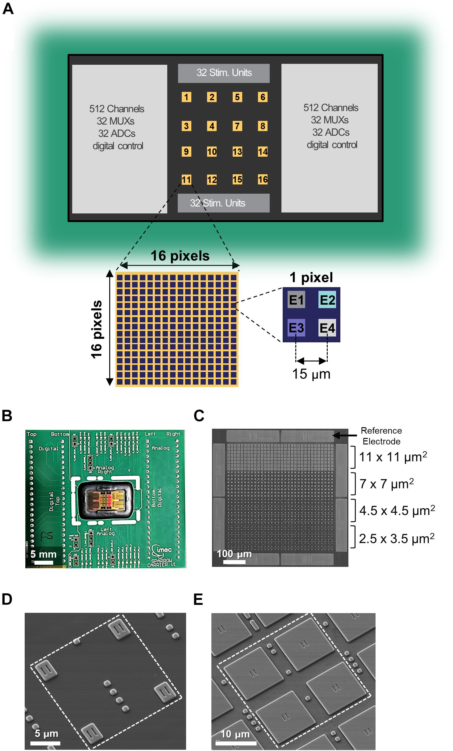 Frontiers   High Density Electrical Recording and Impedance ...