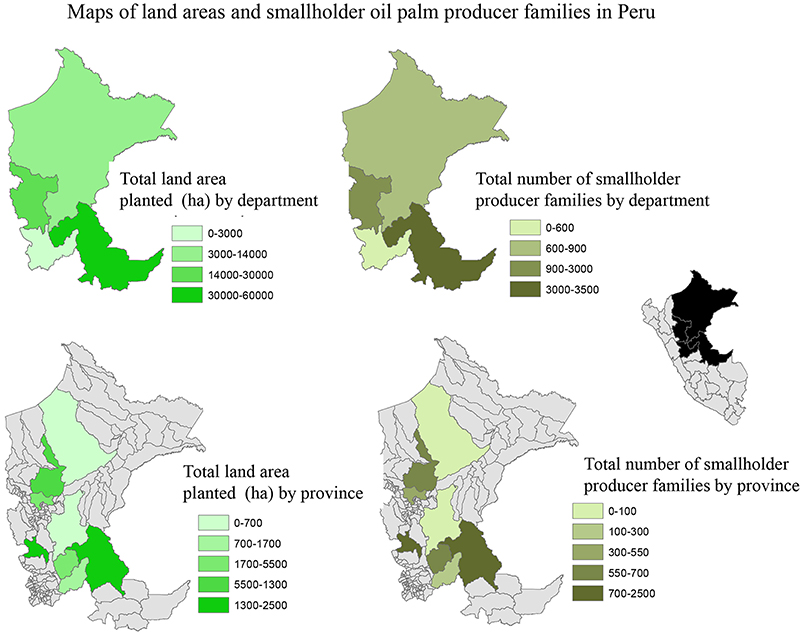 Frontiers Smallholder Oil Palm Production In The Peruvian