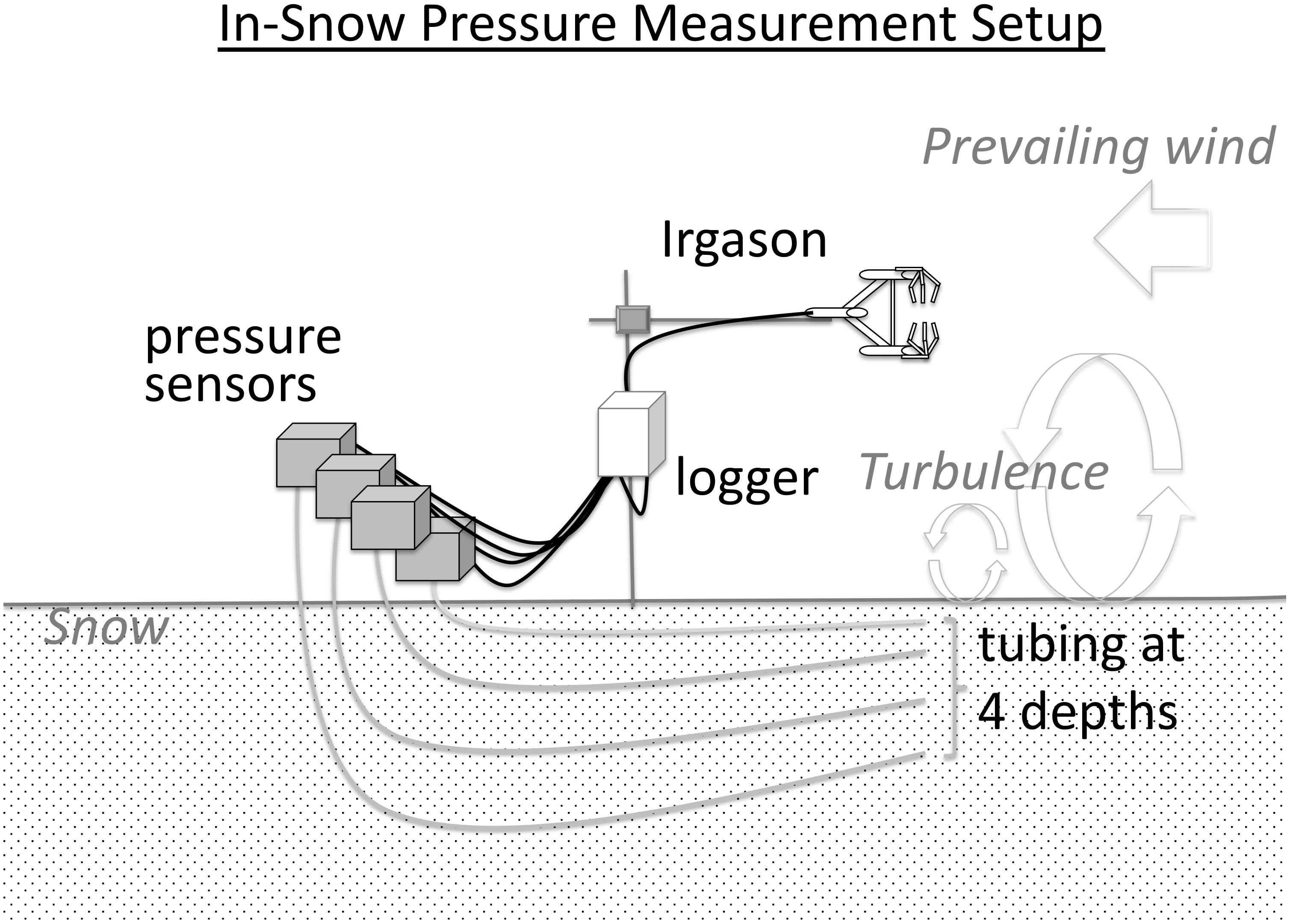 Frontiers | Pressure-Driven Vapor Exchange With Surface Snow