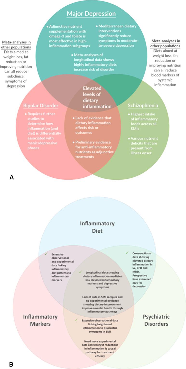 anti inflammatory diet bipolar