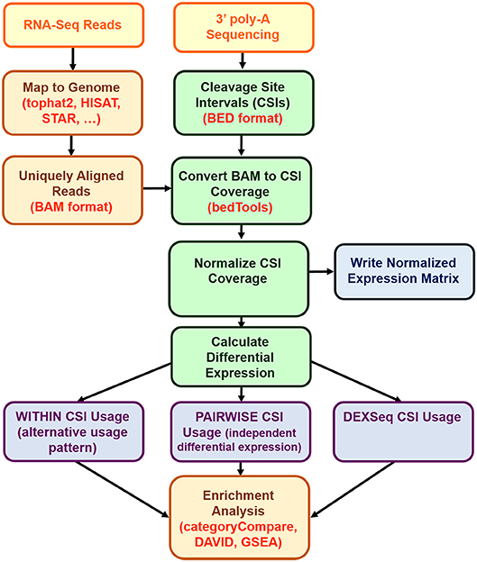 Frontiers | Detection of Differentially Expressed Cleavage