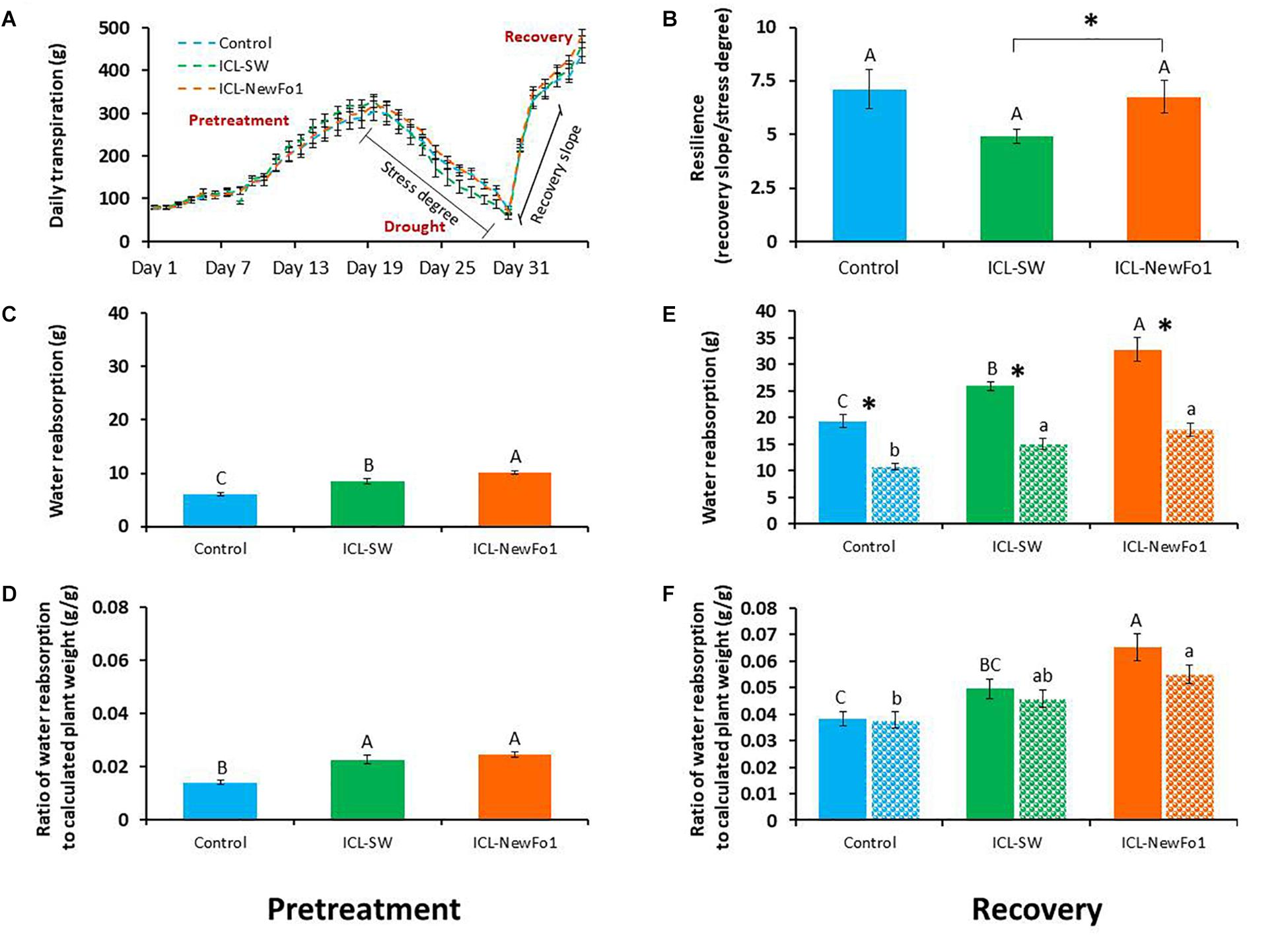 Frontiers | Dynamic Physiological Phenotyping of Drought
