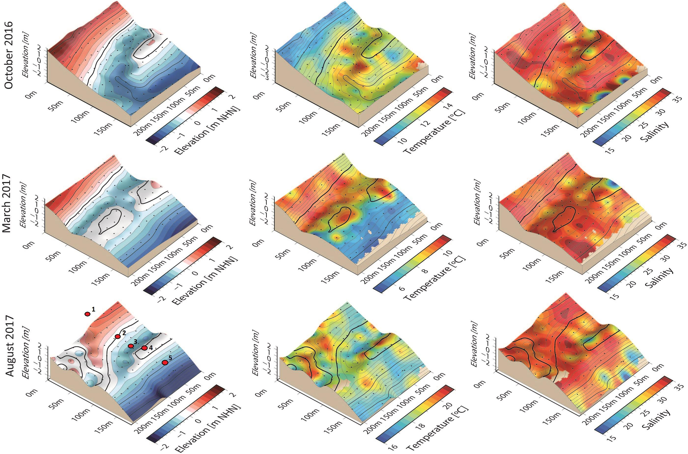 P 2000 Nhn.Frontiers Spatial And Temporal Patterns Of Pore Water