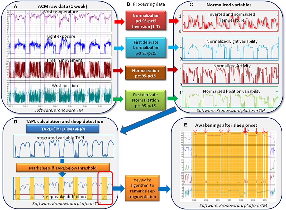 Frontiers | Validation of a Device for the Ambulatory Monitoring of