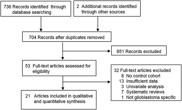 Frontiers   A Meta-Analysis of Survival Outcomes Following
