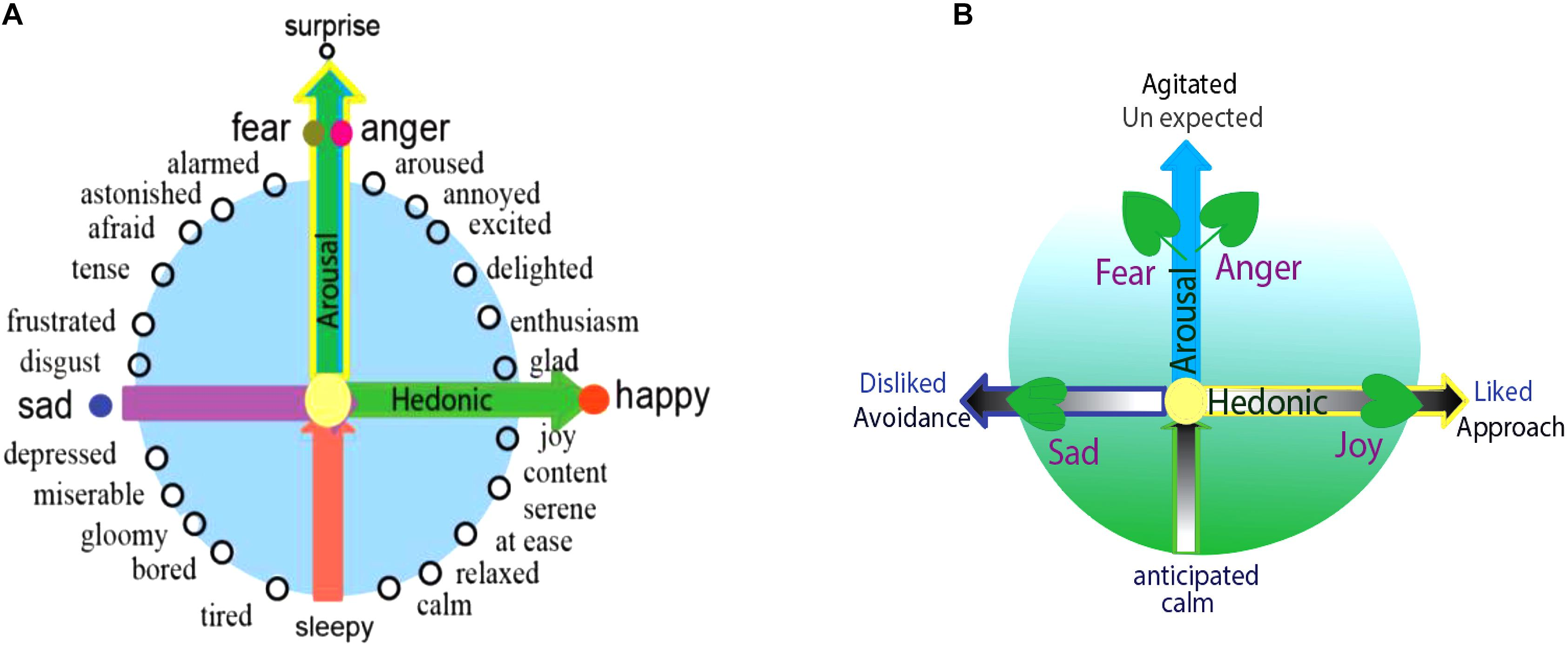 Frontiers A Model For Basic Emotions Using Observations Of