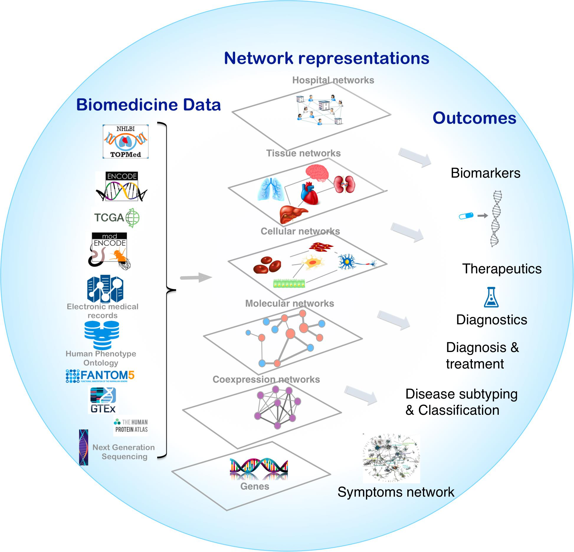 Frontiers | Network Medicine in the Age of Biomedical Big