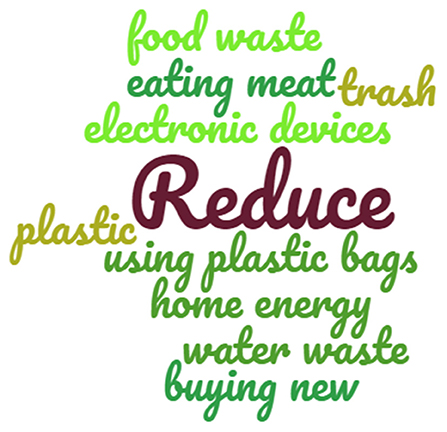 Figure 1 - Word cloud showing the key actions that can be taken to reduce our ecological footprint.