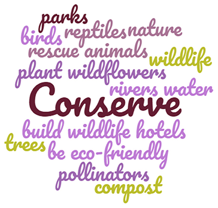 Figure 2 - Word cloud showing the key actions that can be taken to conserve nature.