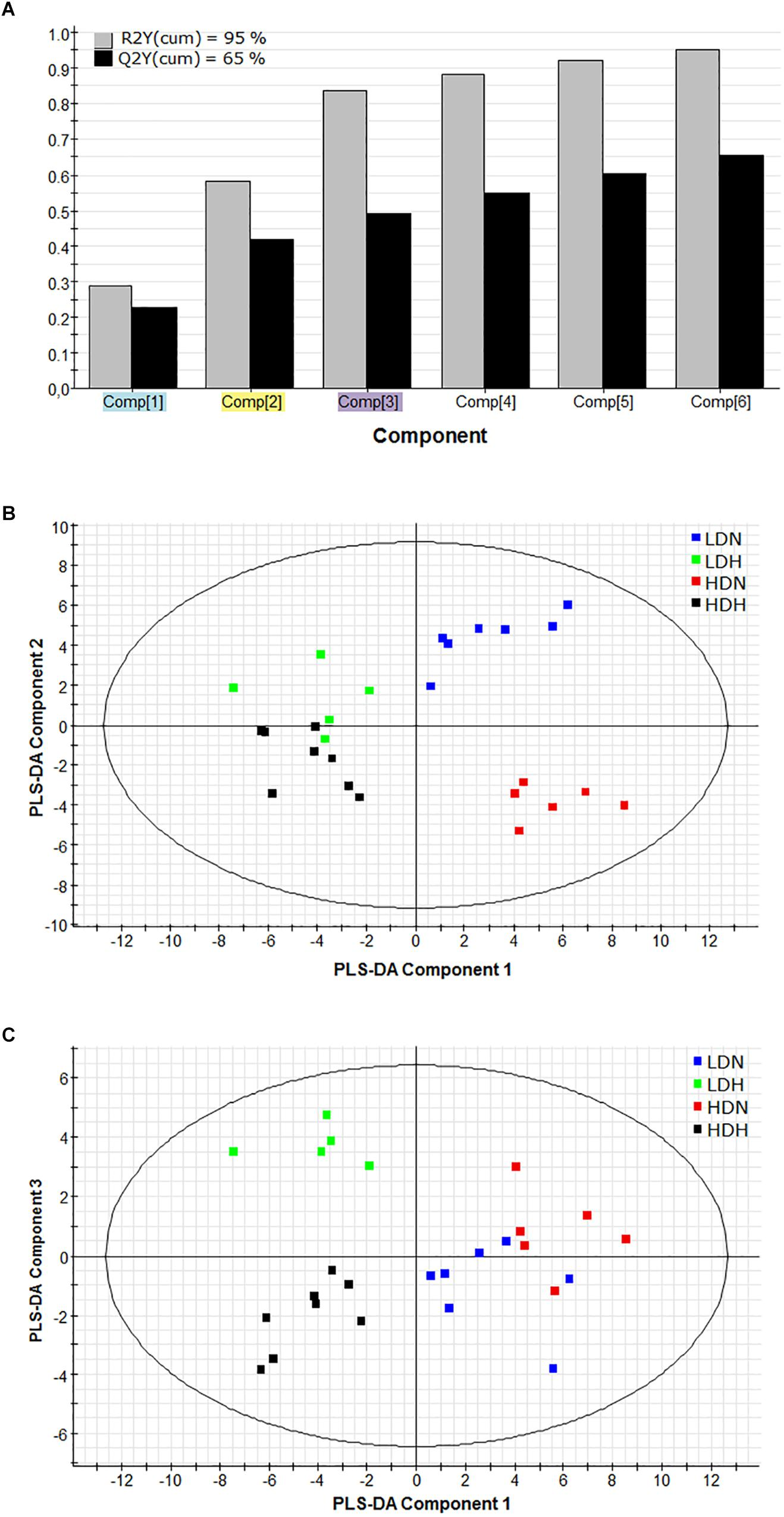 Frontiers | Tissue-Specific Orchestration of Gilthead Sea