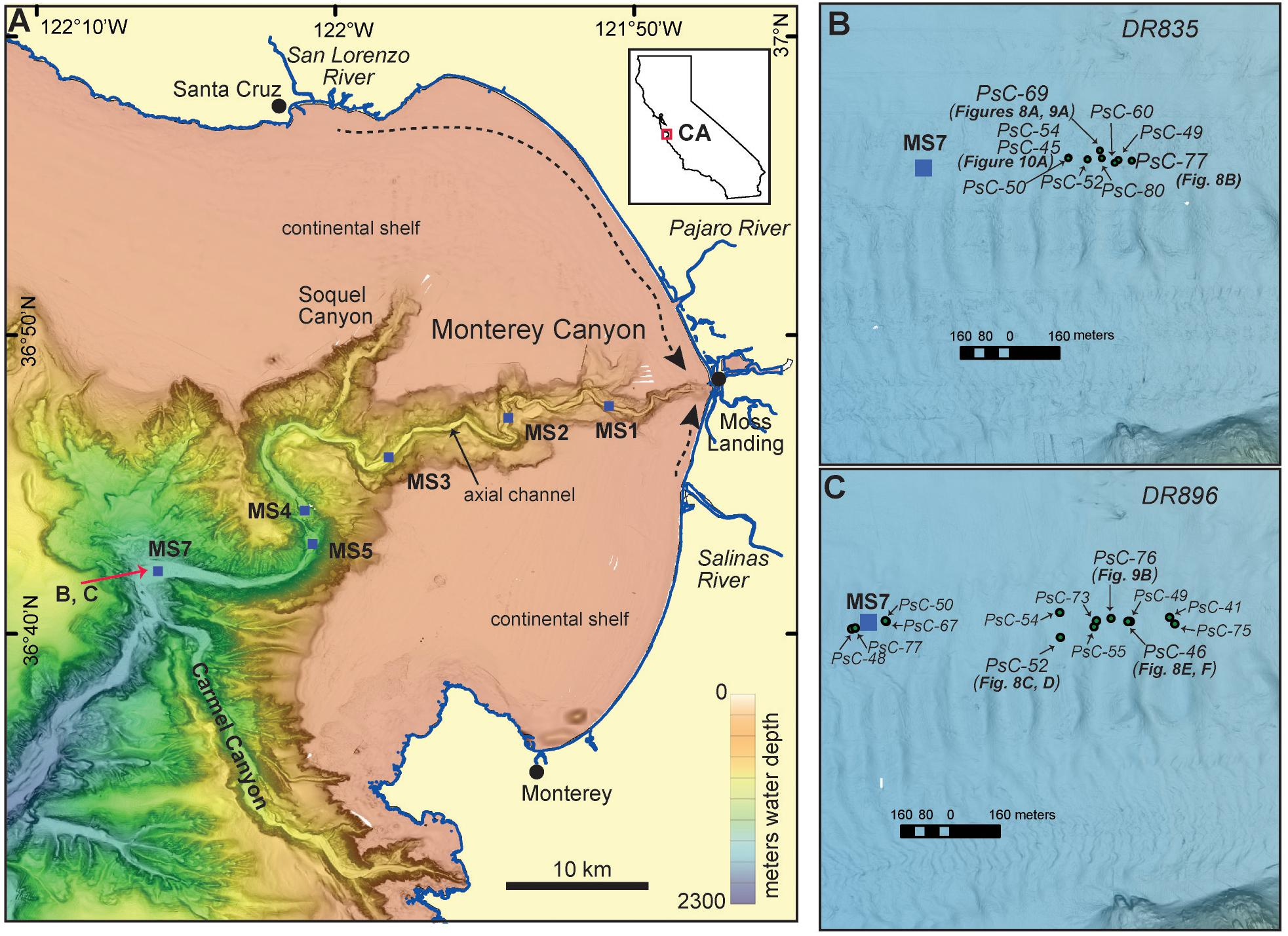 Frontiers | Linking Direct Measurements of Turbidity Currents to