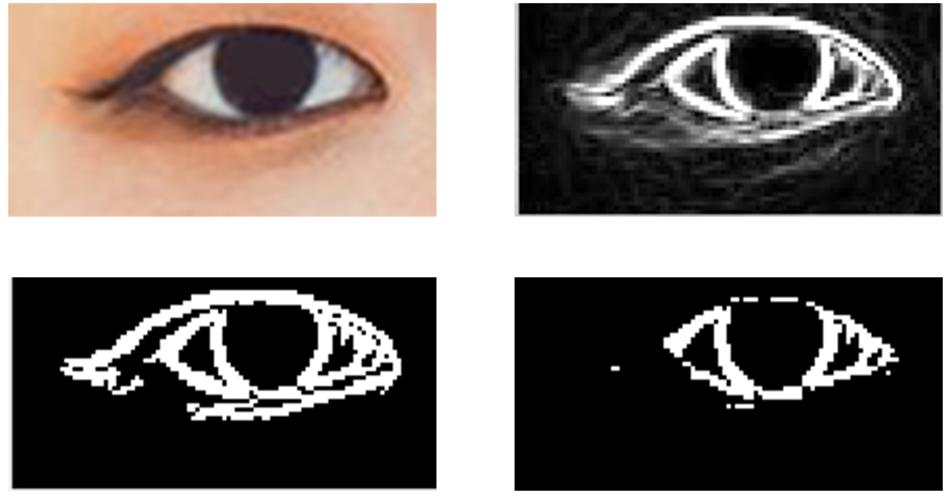 Frontiers | Data-Driven Research on the Matching Degree of Eyes