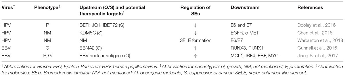 Frontiers | Targeting Super-Enhancers as a Therapeutic Strategy for