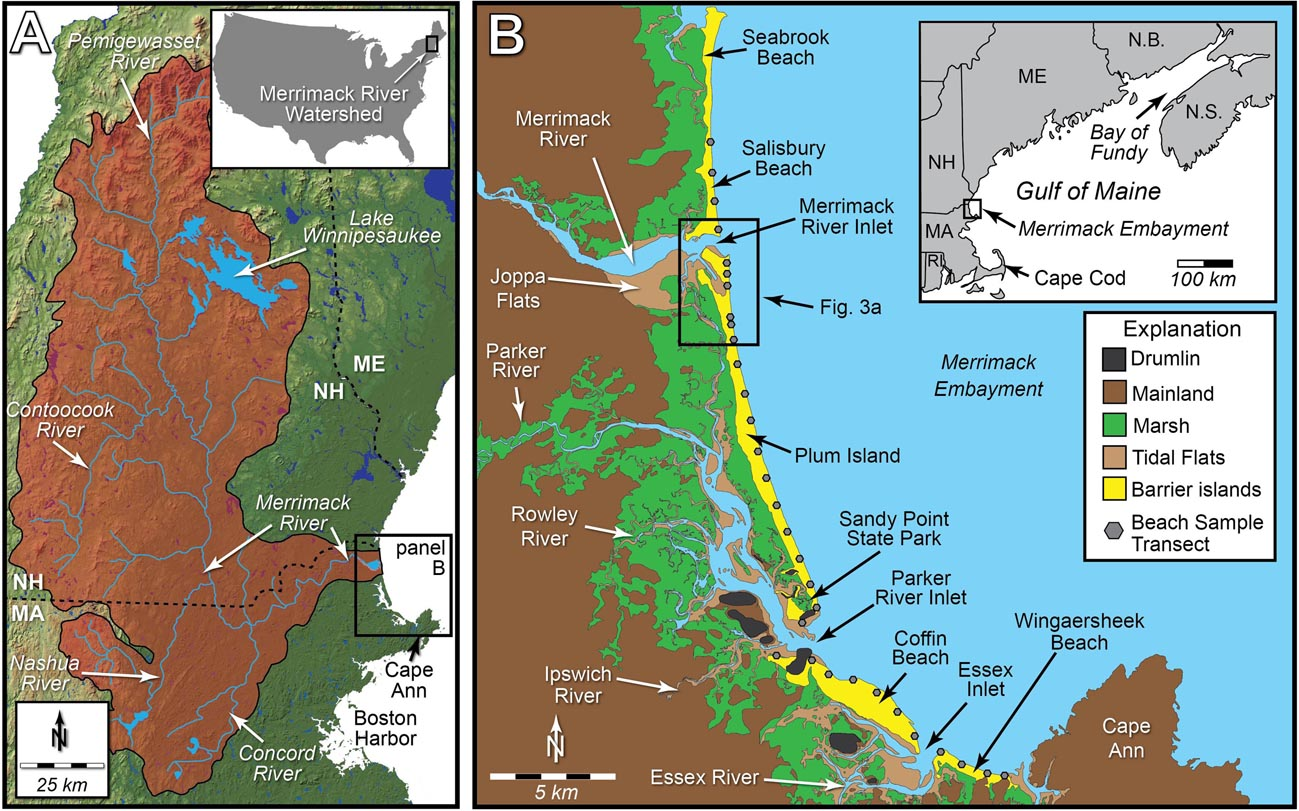 Frontiers | Shoreline Dynamics Along a Developed River Mouth