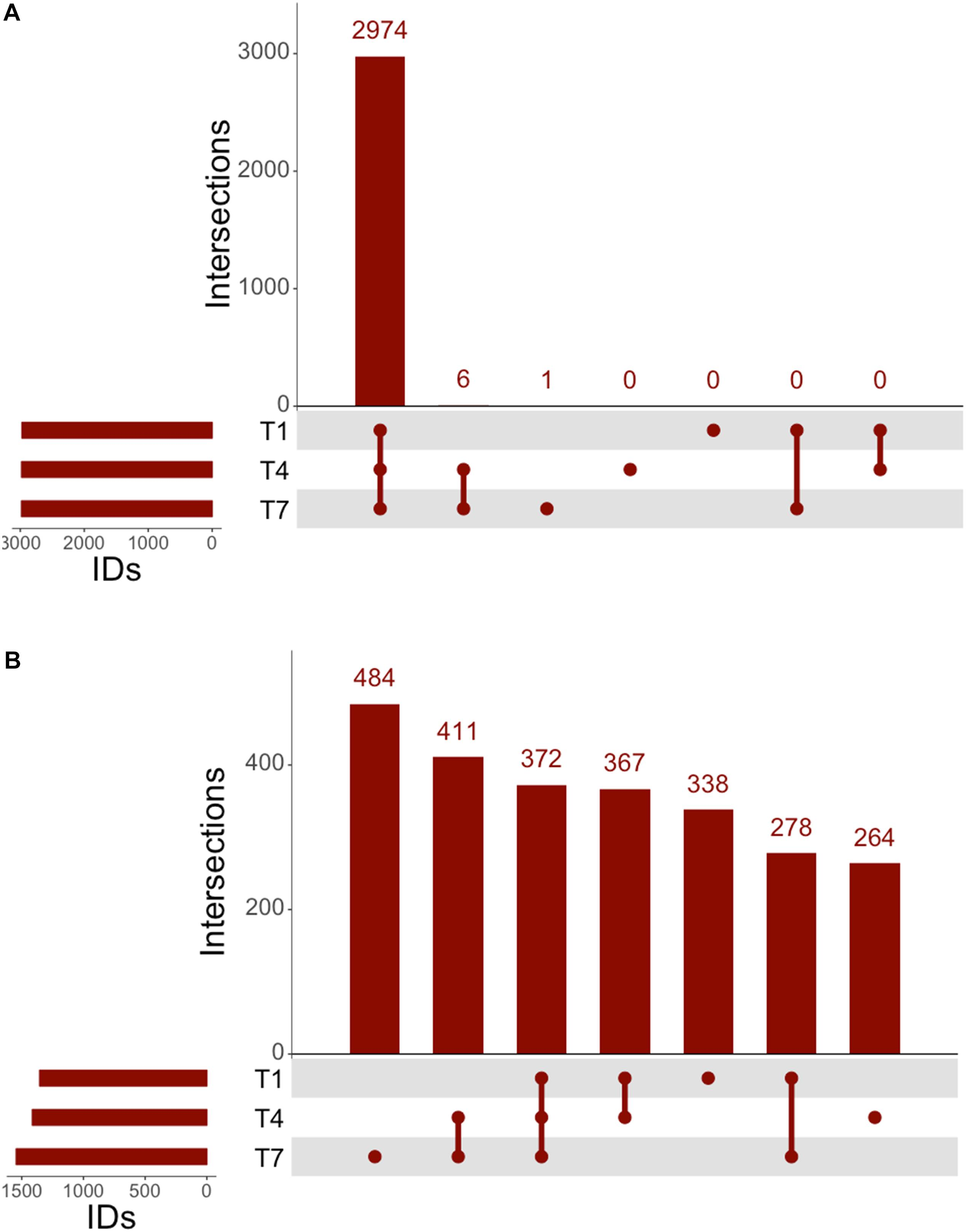 Frontiers | Response of Lactobacillus plantarum WCFS1 to the