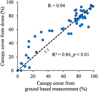 Frontiers | Drone-Based Assessment of Canopy Cover for Analyzing